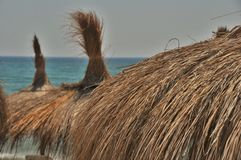 Palm straw umbrellas Royalty Free Stock Image