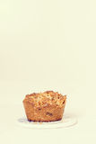 Palm sugar and walnut muffins Stock Images