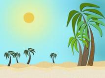 Palm sun sand stock photos