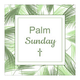 Palm Sunday banner as religious holidays background Royalty Free Stock Images