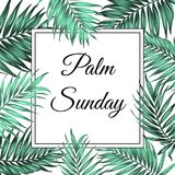 Palm Sunday border frame template green leaves. Palm Sunday Christian feast holiday. Tropical jungle tree palm green leaves border frame template. Square Royalty Free Stock Photography
