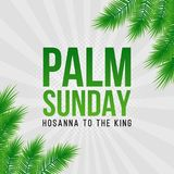 Palm Sunday holiday card, poster with palm leaves border, frame. Vector background. Palm Sunday holiday card, poster with realistick palm leaves border, frame Stock Photography
