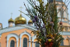 Palm Sunday at Plato church saint pokrova sobor  in Kyiv, Ukraine on April 1, 2018. KYIV, UKRAINE - APRIL 1: Palm Sunday at Plato church saint pokrova sobor  in stock photos