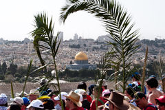 Palm Sunday Procession in Jerusalem Stock Photos