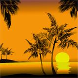 Palm sunset. Vector picture of tropical sunset Royalty Free Stock Images
