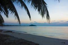 Palm and Sunset beach Stock Photos