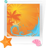 Palm sunset ocean with starfish and seashell. Photo with summer sunset decorated starfish and seashell Stock Image