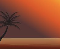 Palm in the sunset. Vector illustration. EPS 10.  Stock Photos