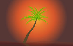 Palm in the sunset. Vector illustration. EPS 10 Stock Images