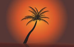 Palm in the sunset. Vector illustration. EPS 10.  Royalty Free Stock Photo
