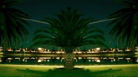 Palm Symmetry Royalty Free Stock Photos
