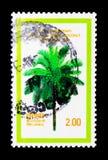 palm, toegewijd aan 10de Aniversary van APAC-gemeenschap, serie, circa 1979 Stock Afbeelding