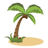 Palm tree. Illustration of a palm tree with coconuts isolated on white background.EPS file available Stock Photography