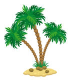 Palm tree stock illustration