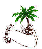 Palm tree. Tropical background with palm tree Royalty Free Stock Image