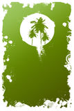 Palm tree. Tropical background with palm tree Royalty Free Stock Photo