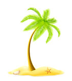 Palm tree. Computer illustration, isolated on the white