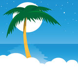 Palm tree. Illustration of a tropical palm tree Royalty Free Stock Photos