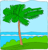 Palm Tree. A palm tree blows with the wind, near the coastline, on top of a raised strip Stock Photos
