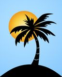 Palm tree. Tropical island with palm tree stock illustration