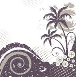 Palm-tree. Royalty Free Stock Photo