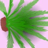 Up on the black hole. Palm tree abstraction, image from a CAD drawing like a traditional oriental ink painting, becomes a funny flying creature. For landscape Royalty Free Stock Image