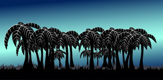 Palm tree alley blue Royalty Free Stock Images