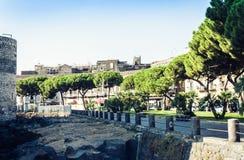 Palm tree alley near Castello Ursino – ancient castle in Catania, Sicily, Southern Italy.  stock photo
