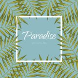 Palm tree banner. Exotic aloha frame background. Paradise vector leaves. Palm tree banner. Exotic background. Leaf frame Stock Image