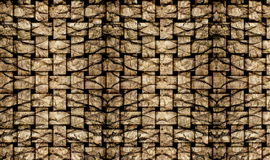 Palm tree bark texture matting Stock Images