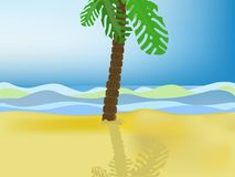 Palm tree on a beach Royalty Free Stock Photo