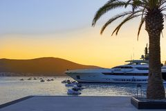 Palm tree on the beach, Bay with yachts at sunset. The palm tree on the beach, Bay with yachts at sunset Stock Image