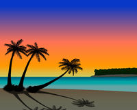 Palm tree beach at sunset. Beach with palms at sunset Royalty Free Stock Images