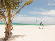 Palm tree, beach volei and lifeguard chair Royalty Free Stock Photography