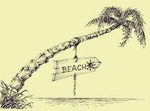 Palm tree on the beach royalty free illustration