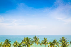 Palm tree with beautiful seascape Royalty Free Stock Photography