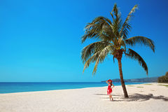 Palm tree. Beautiful woman on exotic Beach. Carefree young girl Royalty Free Stock Photo