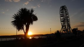 Palm tree and big wheel in silhouette against the setting sun Royalty Free Stock Photos