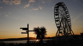 Palm tree and big wheel in silhouette against the setting sun Stock Image