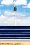 Palm tree and a blue fence. False palm tree with a radio station in it standing behind a strongly coloured deep blue fence with white lines Royalty Free Stock Photo