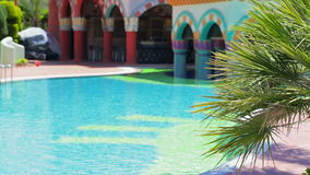 Palm tree and blue pool. Palm tree leaves and pool water during calm sunny day stock video