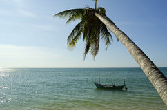 Palm tree & Boat. Paradise Island Palm Tree & Boat over the Water Stock Images