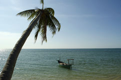 Palm Tree and boat on the Water. A shot of a Palm Tree & a boat on the Sea Stock Photos