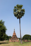Palm tree and Buddhist stupa Royalty Free Stock Photography