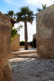 Palm tree and buildings. Narrow village street with palm tree in background, Sicily, Italy Stock Image