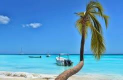 Palm Tree And Caribbean Sea. Palm Tree, Caribbean Sea, Boats And Blue Sky Royalty Free Stock Photos