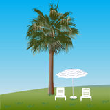 Palm tree and chaise lounges. Palm, two chaise lounges and solar umbrella Royalty Free Stock Images