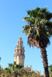 Palm tree and church Barcelona Cathedral bell tower Royalty Free Stock Photo