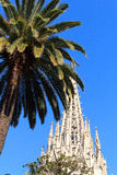 Palm tree and church Barcelona Cathedral steeple tower Stock Photos