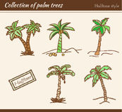 Palm Tree Collection Royalty Free Stock Images